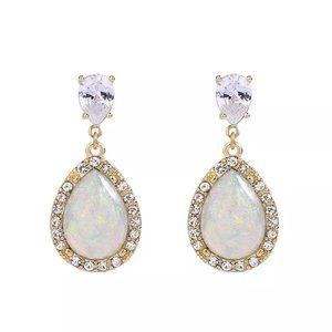 Stunning opal 🔥 earrings